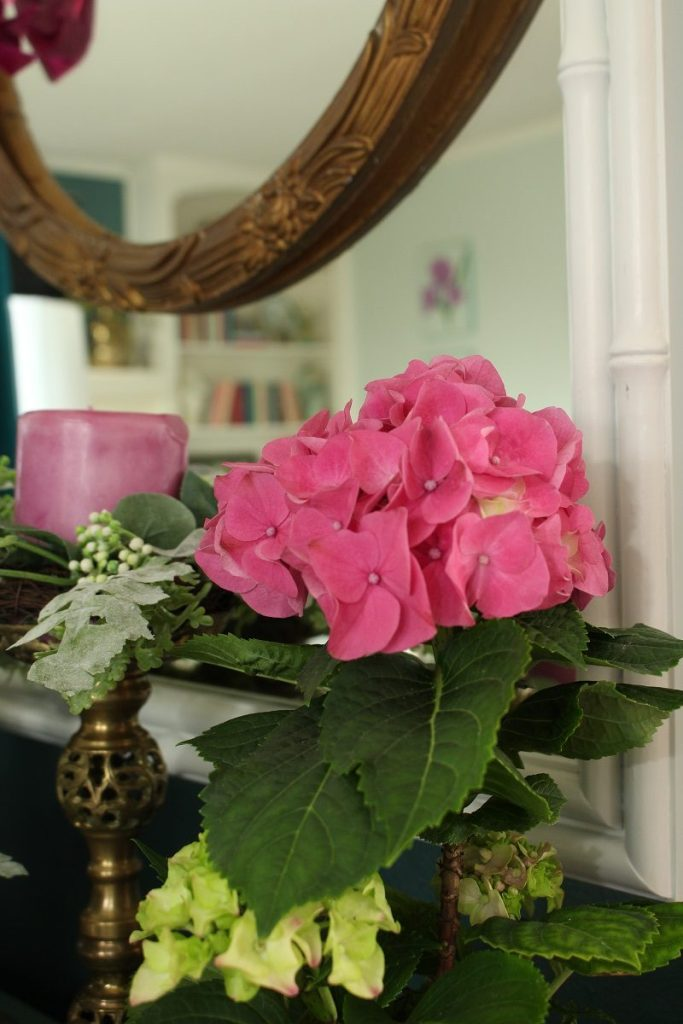 Indoor Pink Hydrangea and Vintage Brass Candlestick