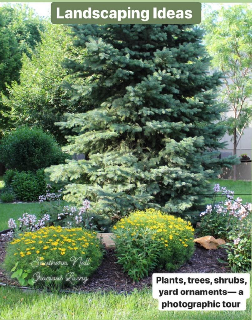 Front Yard and Backyard Landscape Ideas