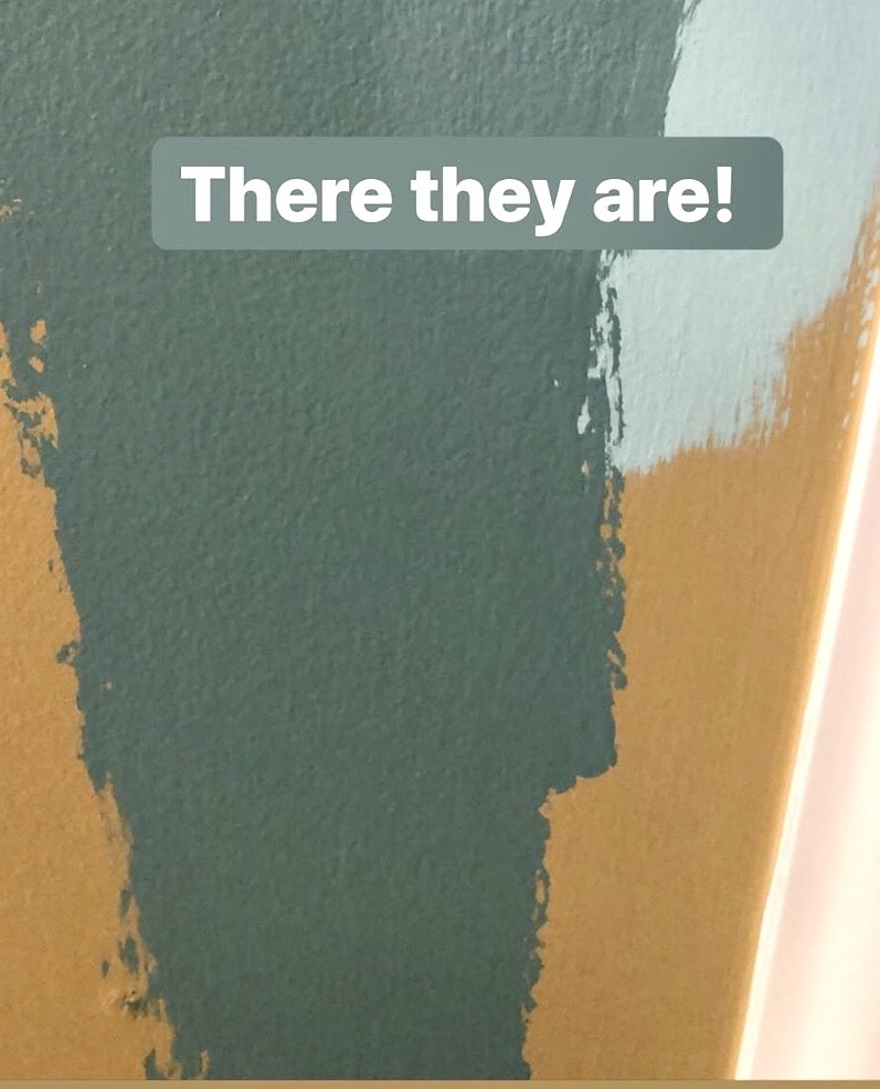 Paint Color Tests for Ceiling