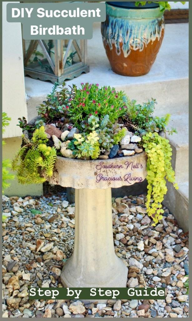 DIY Succulent Birdbath with Green Succulents in Rock Garden