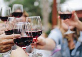 Best Wineries in North Georgia