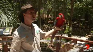Recent Project: Grab rails at Currumbin Wildlife Sanctuary