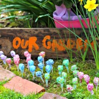 Magic Jelly Bean & Dum Dum Lollipop Garden