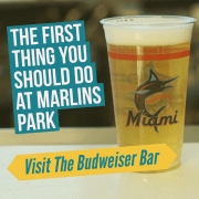 The first thing you should do at Marlins Park