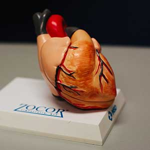 Heart Health And How You Can Improve It