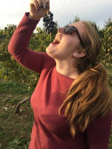 """Marlaina Contino, 21, an Advertising major at Rowan University, finds the main ingredient to her favorite beverage while walking the vineyards at Heritage Vineyard in Mullica Hill, N.J., Wednesday October 26, 2016. Contino visits Heritage Vineyard often and knows where to find the most delicious grapes. (Photo/Amanda Dean) """" Heritage grows the sweetest grapes. Just the way I like my wine,"""" said Contino."""