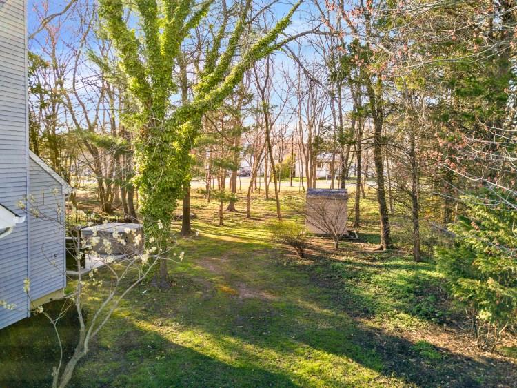 The yard at 49 Woodduck
