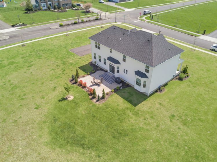 Aerial View of the back yard
