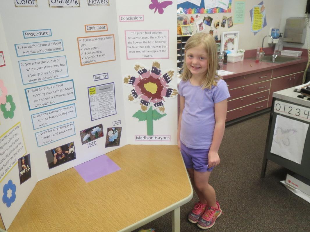 Science Fair Kindergarten