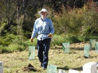 Pur BMCC bushcare officer enjoys planting days! May 2011