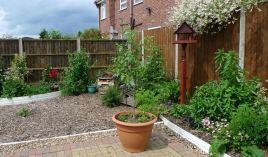 Oadby garden 1