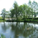 South Manchester Angling Club – The Original