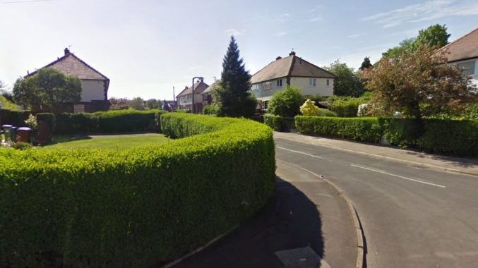 Hollyhouse Drive in Woodley