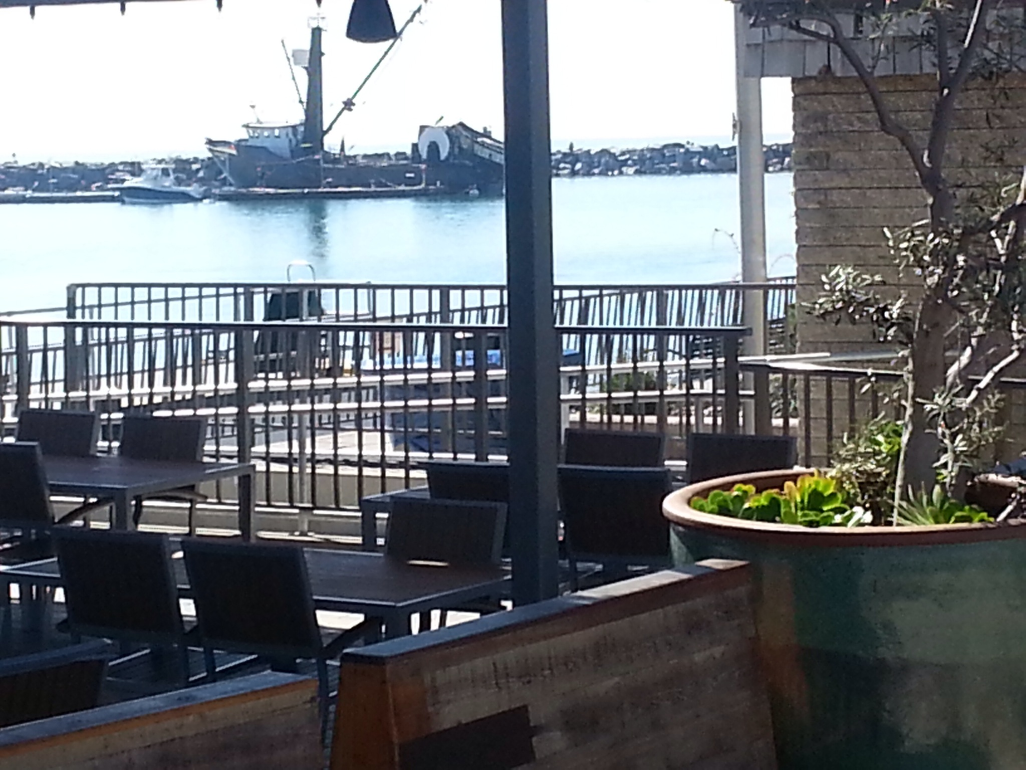 Watermans Dana Point Harbor New Restaurant In The Harbor Opens To