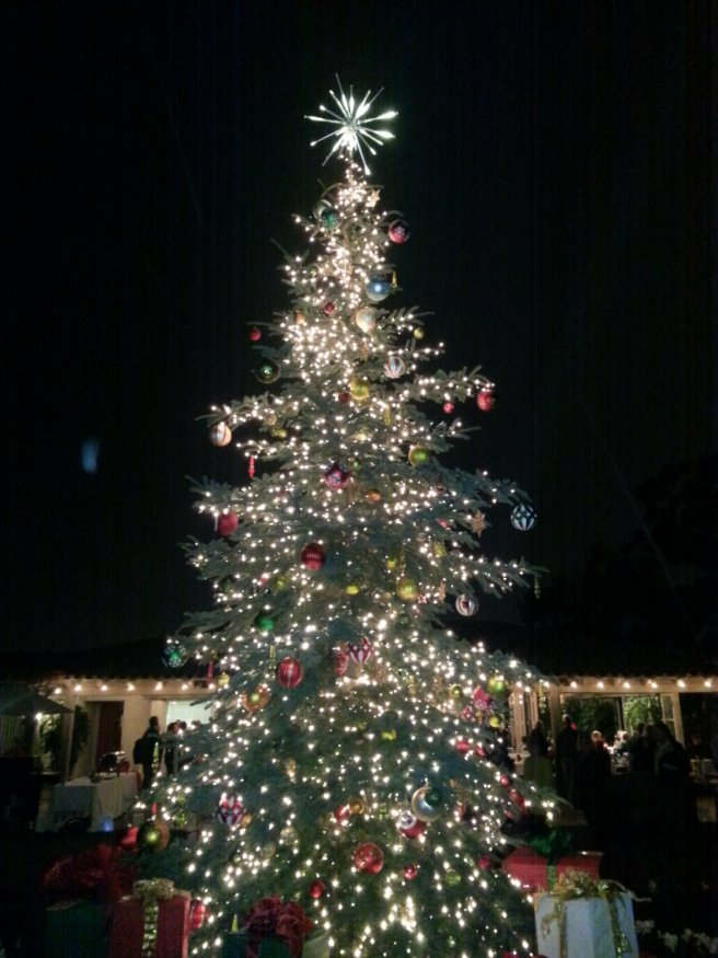 lighted christmas tree by southocbeaches.com