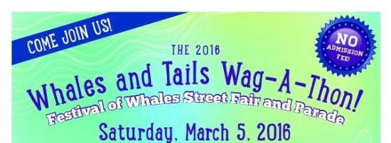 pet project whales and tails wag a thon march 5 2016