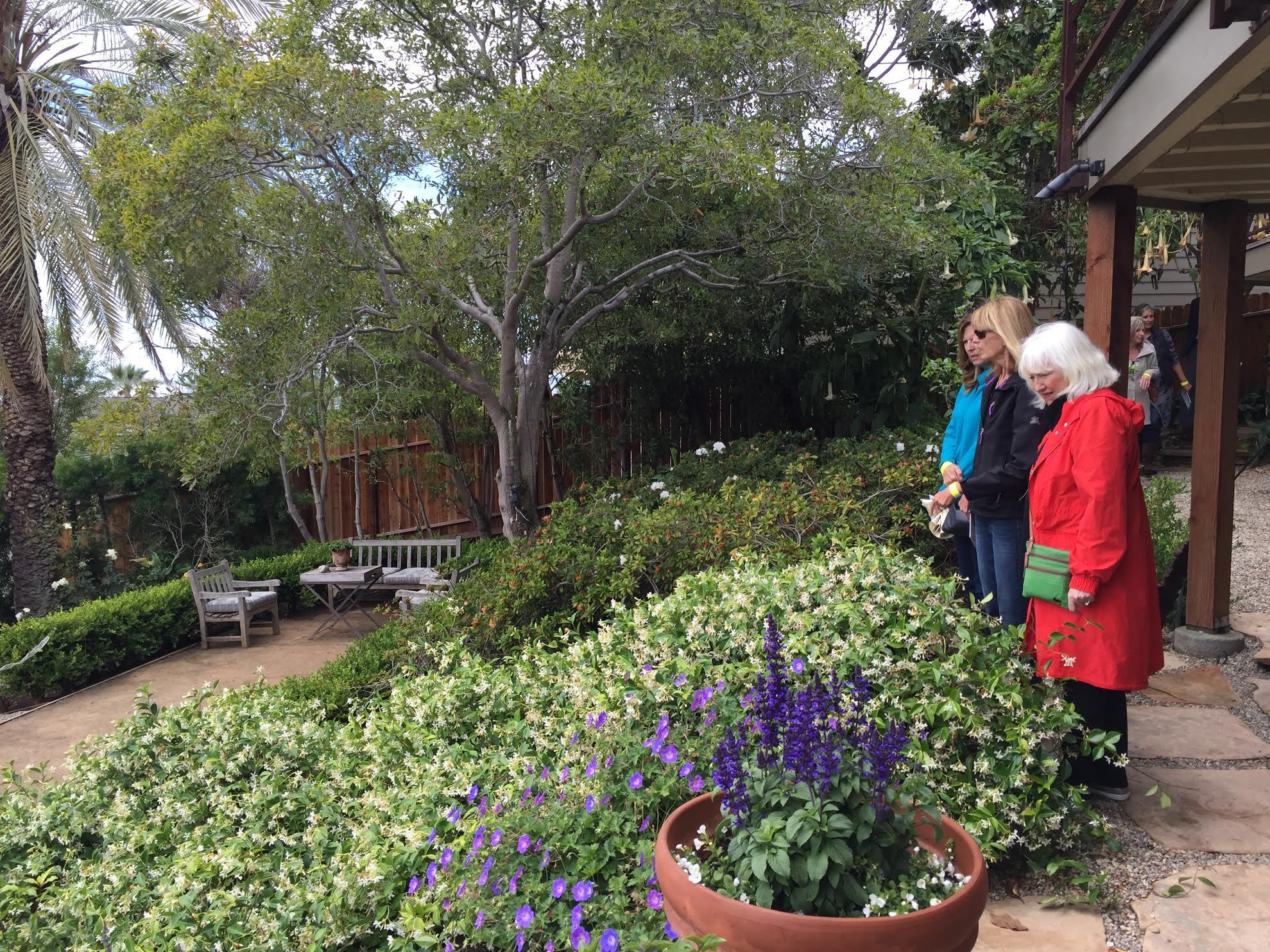 Generous Madison Garden Laguna Beach Contemporary - Beautiful Garden ...