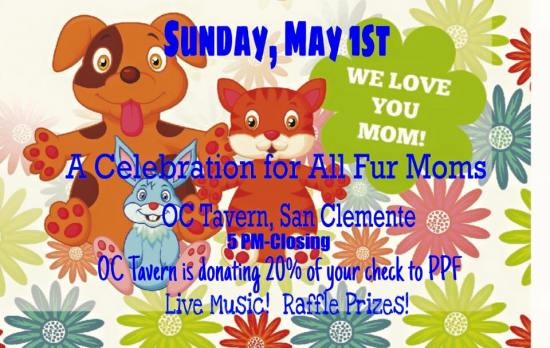 San Clemente Pet Foundation Fundraiser May 1 2016