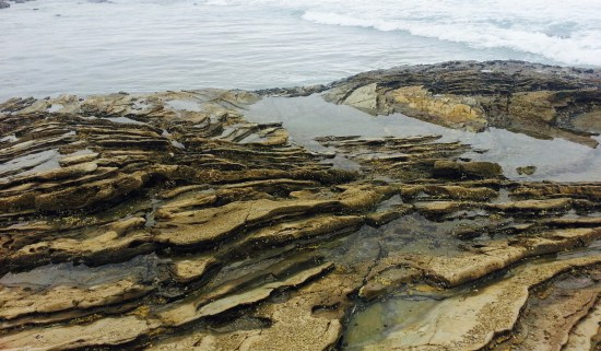Crystal Cove Tidepools by SouthOCBeaches.com