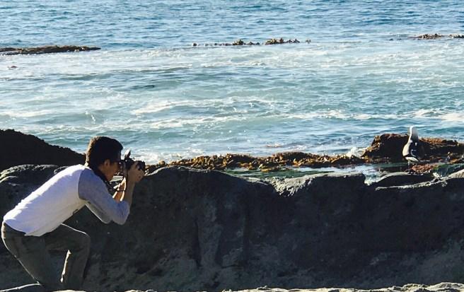 Treasure Island Laguna Beach California by SouthOCBeaches.com
