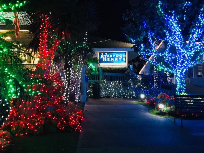 Dana Point Holiday Lights Courtesy of SouthOCBeaches.com