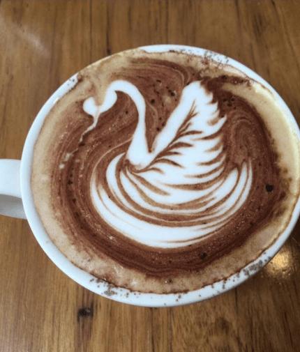 Swan-choc