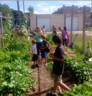 The current school garden in Greenport during the growing season last summer.Courtesy photo: Greenport schools