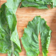 Preparation for fresh kale