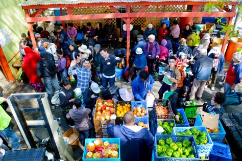 Clients and volunteers create a lively scene at the Rainier Valley Food Bank any time of year. Credit: Courtesy of Rainier Valley Food Bank