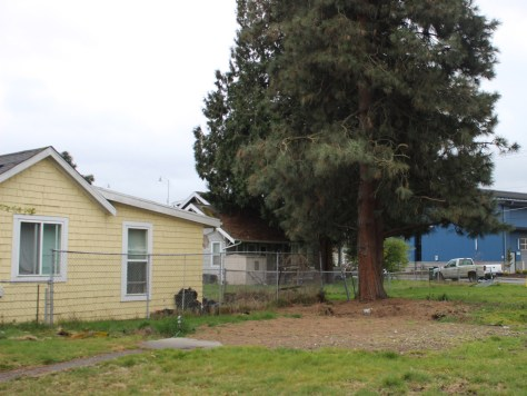 Photo of few remaining affordable cottage houses in Seattle's South Park neighborhood.