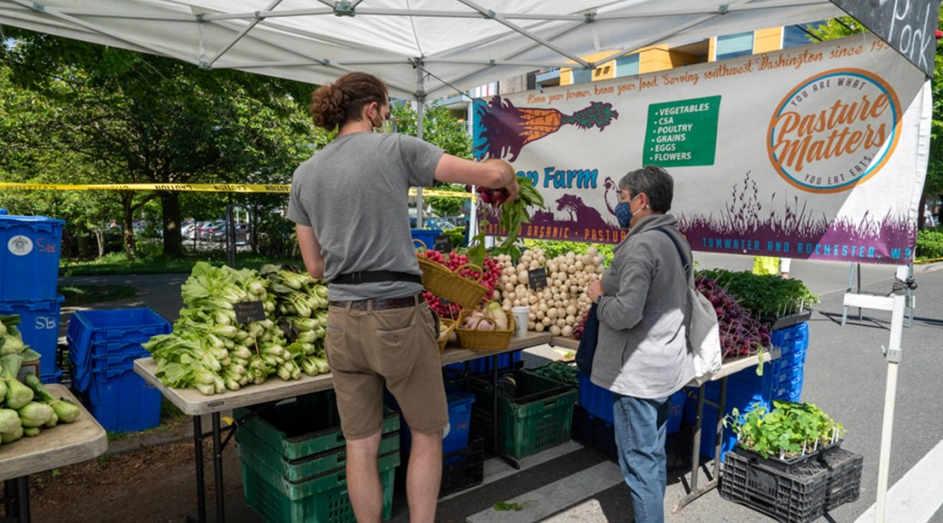 A market-goer purchases purple radishes from Kirsop Farm on opening day of the Columbia City Farmers Market.