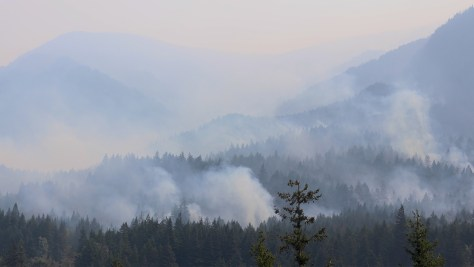 Wildfire smoke in forests above the Columbia River in southwestern Washington in 2017.