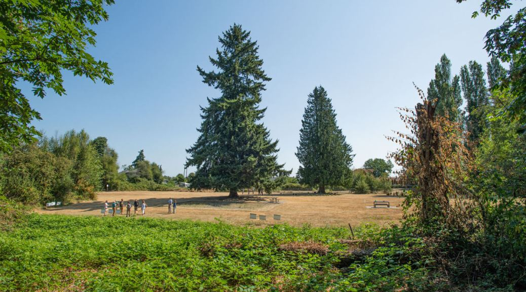 Photo of an overview of Hilltop Park with two large trees off in the distance.