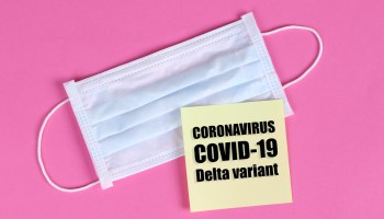 """Photo of a white surgical face mask against a pink backdrop with a yellow square in front of the mask with black text that reads """"Coronavirus COVID-19 Delta variant."""""""