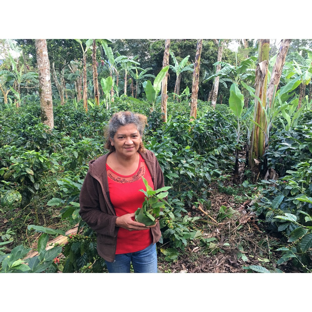 Coffee farmer Maria Velazquez in front of some of her coffee shrubs in Nicaragua