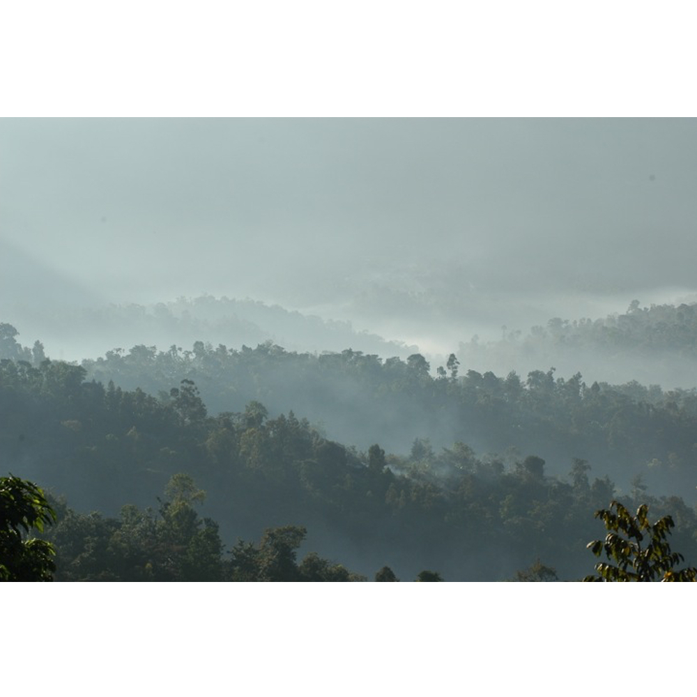photo of the rolling hills of the surrounding mountains in the Guji area of Ethiopia