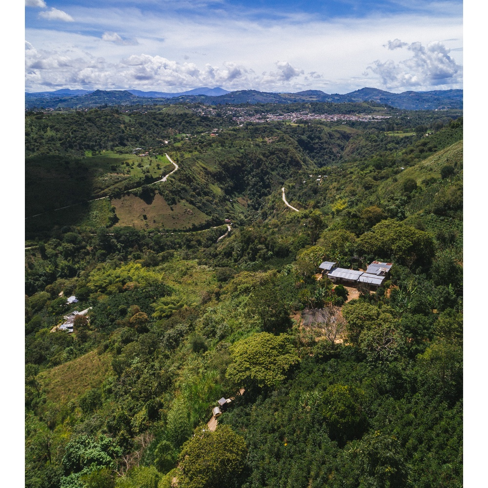 panoramic view of coffee farms in san agustin huila colombia