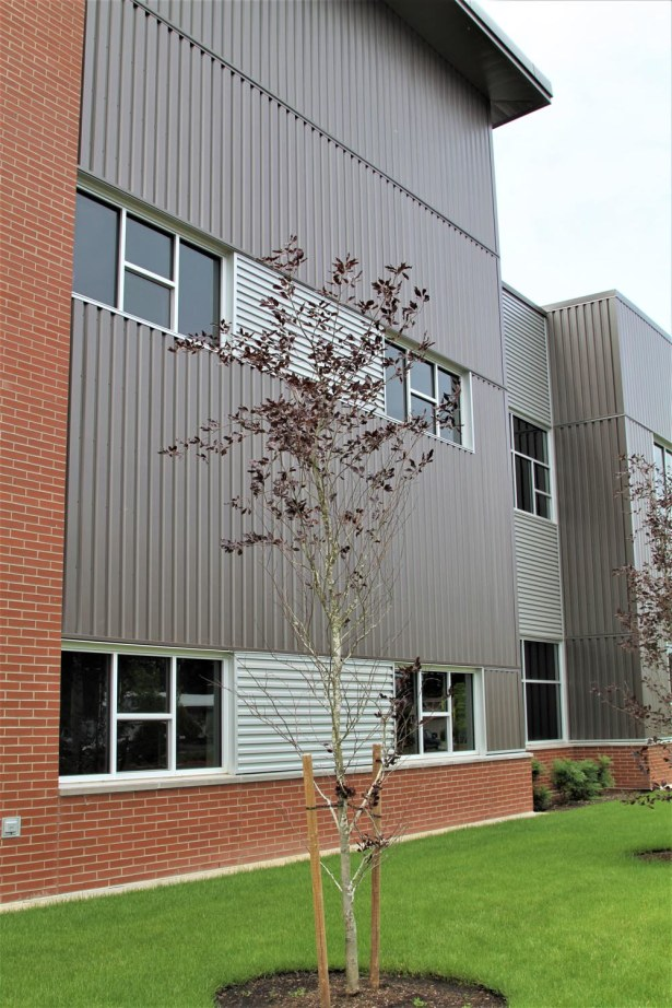 North Gresham Elementary School (25)