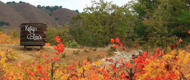 Santa Clara County Wine Trail Kirigin Cellars
