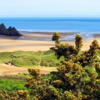 Sands Of Life - Revitalising Wales Dunes