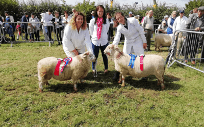 Vale Show 2019