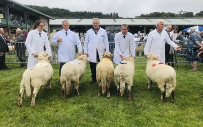Royal Welsh Show 2019