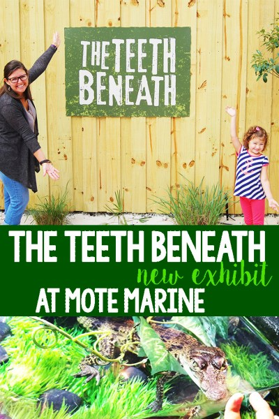 The Teeth Beneath