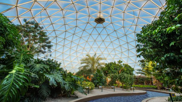 The Science Behind the Seeds Program at Epcot