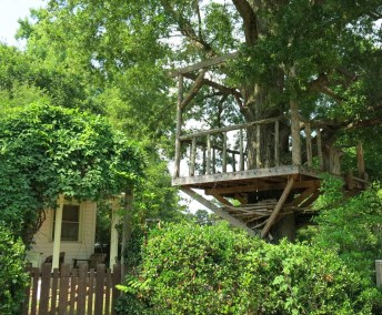 pullen-hill-tree-house