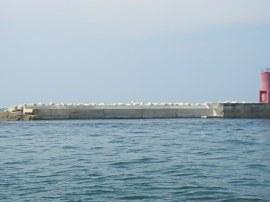 宋徳建設 海洋工事 地方港湾久美浜港 港湾統合補助工事
