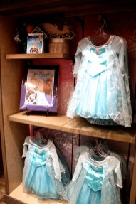 Frozen costumes movie Elsa dress merchandise souvenir Disney world