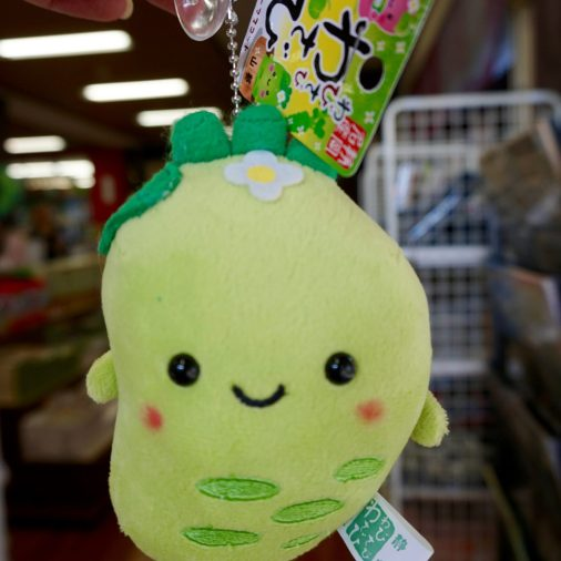 Because who wouldn't want a plush kawaii wasabi.