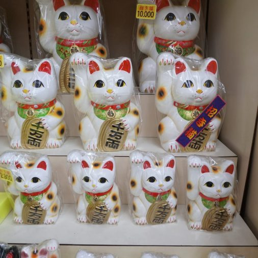 Kitties at Kawasaki shops.