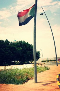 Sudan's national flag is red, green, white, and black. You'll find them hanging across many government buildings and universities.